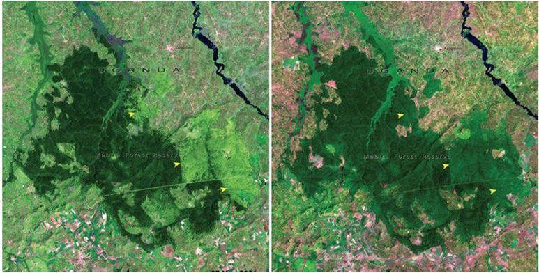 NASA Released Images Of The Process Of Earth's Aging