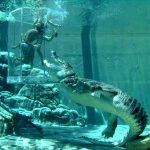 Would You Like To Visit These Bizarre Theme Parks?