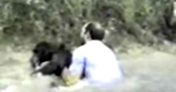 Brave Man Risks Own Life To Save The Life Of A Chimpanzee