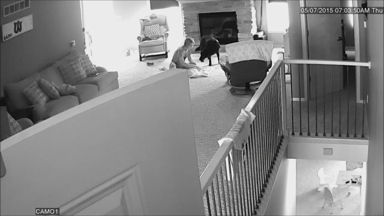 Cam Footage Revealed Babysitter and Day Care Worker Was Nothing But A Monster!