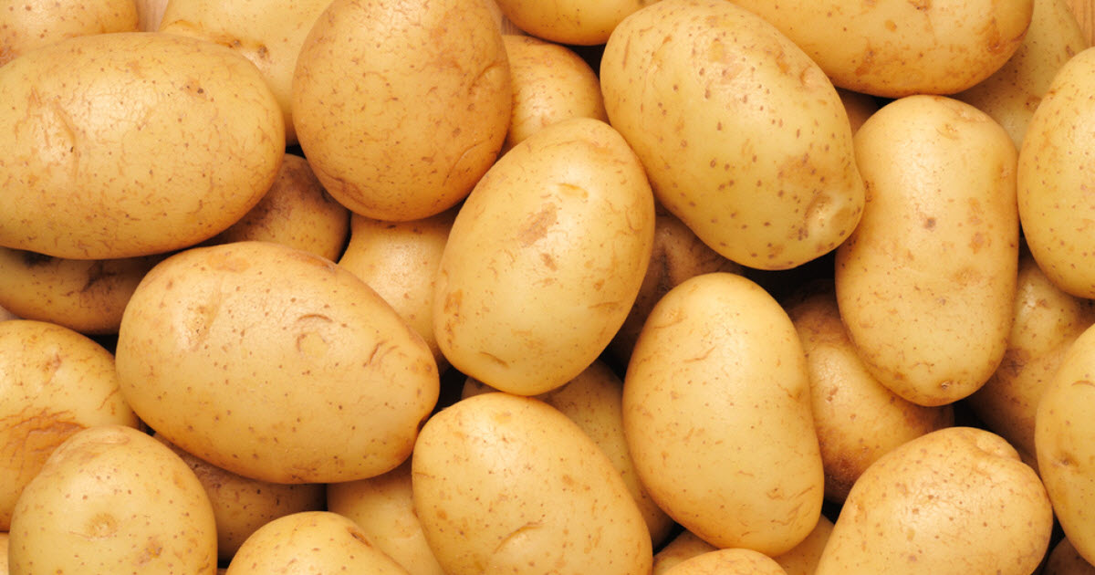 Do You Know Boiled Potatoes Can Light A Room Up To 40 Days?