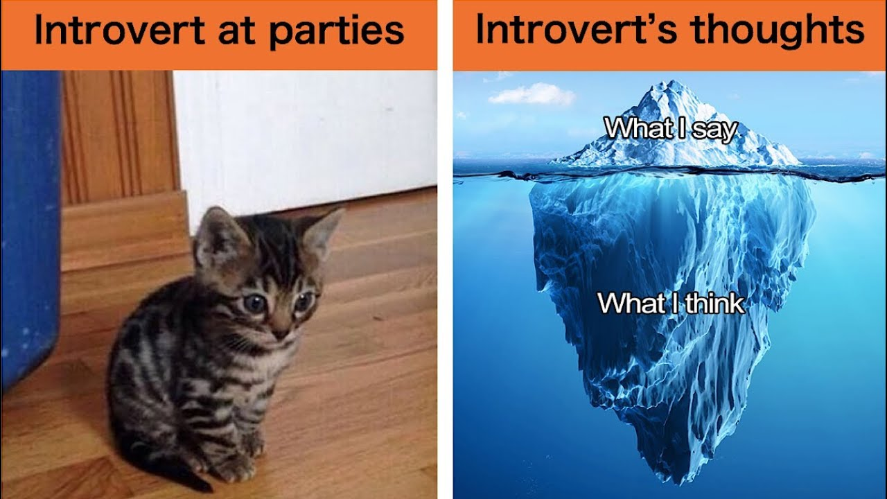 30+ Hilarious Memes That Will Make Every Introvert Laugh Out Loud